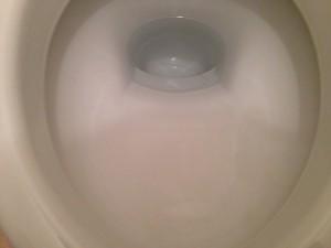 トイレのハウスクリーニングを川崎市麻生区王禅寺にて【清掃事例8】