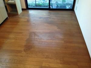床、建具のハウスクリーニングを横浜市神奈川区入江にて【清掃事例121】