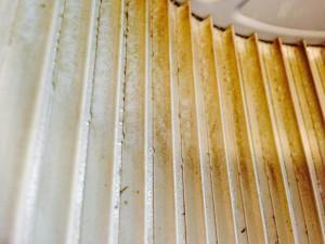 レンジフードのハウスクリーニングを横浜市港北区大豆戸町にて【清掃事例163】
