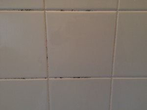 お風呂(浴室)のハウスクリーニングを川崎市高津区千年新町にて【清掃事例182】