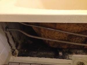 お風呂(浴室)のハウスクリーニングを横浜市港北区綱島上町にて【清掃事例229】