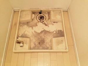 洗面所のハウスクリーニングを横浜市保土ヶ谷区川辺町にて【清掃事例281】