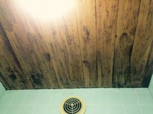 お風呂(浴室)のハウスクリーニングを川崎市中原区市ノ坪にて【清掃事例287】