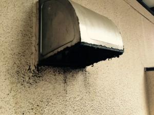 外部のハウスクリーニングを川崎市中原区上平間にて【清掃事例293】