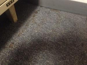 建具のハウスクリーニングを川崎市高津北見方にて【清掃事例408】