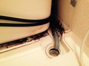 お風呂(浴室)のハウスクリーニングを川崎市麻生区金程にて【清掃事例458】