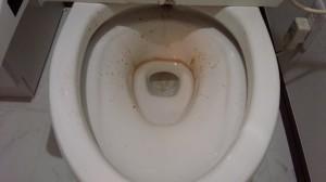 トイレのハウスクリーニングを川崎市高津区新作にて【清掃事例492】
