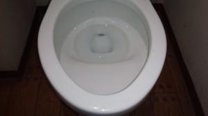 トイレのハウスクリーニングを川崎市中原区新丸子町にて【清掃事例503】