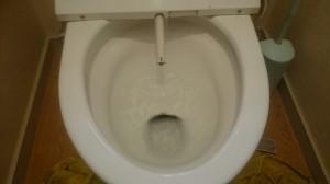 トイレのハウスクリーニングを川崎市川崎区下並木にて【清掃事例538】