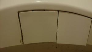 トイレのハウスクリーニングを川崎市高津区野川にて【清掃事例543】
