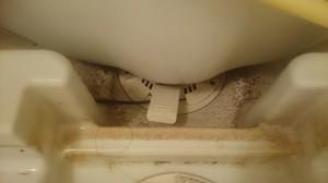 お風呂(浴室)のハウスクリーニングを川崎市高津区野川にて【清掃事例542】