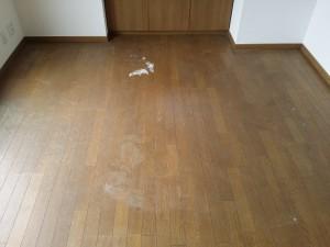 WAX剥離のハウスクリーニングを川崎市多摩区菅稲田堤にて【清掃事例614】