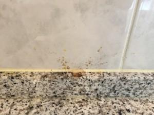 キッチンのハウスクリーニングを横浜市青葉区桂台にて【清掃事例689】