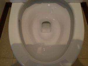 トイレのハウスクリーニングを川崎市中原区上平間にて【清掃事例896】