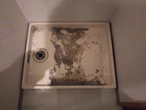洗面所のハウスクリーニングを川崎市高津区下作延にて【清掃事例963】