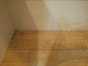 フローリングのハウスクリーニングを東京都品川区戸越にて【清掃事例1121】
