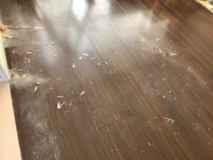 フローリングのハウスクリーニングを川崎市宮前区五所塚にて【清掃事例1054】
