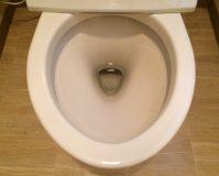 トイレのハウスクリーニングを横浜市戸塚区秋葉町にて【清掃事例1135】