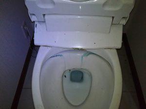 トイレのハウスクリーニングを東京都江戸川区篠崎町にて【清掃事例1384】