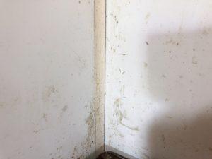 壁のハウスクリーニングを川崎市多摩区枡形にて【清掃事例1402】