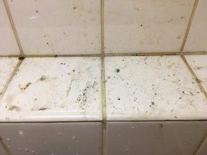 お風呂(浴室)のハウスクリーニングを川崎市宮前区潮見台にて【清掃事例1480】